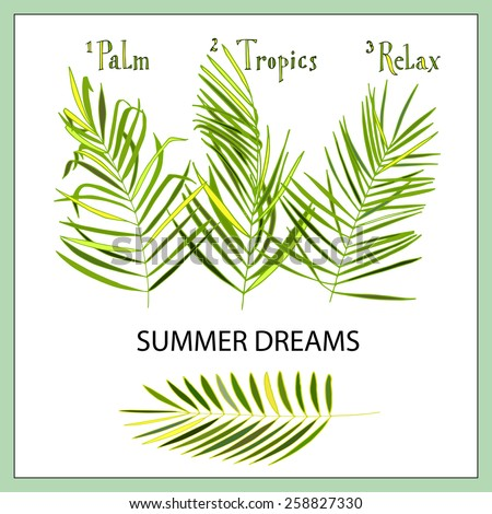 """Set of palm leaves with hand lettering """"Palm Tropics Relax"""".  May be used as a summer card. - stock vector"""