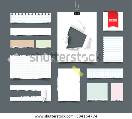 Set of paper sheets and pieces. Squared and lined notepaper, paper with hole and paper roll, torn paper with ripped edges, ragged pages, scotch tape, paper clip. Realistic vector template for branding - stock vector