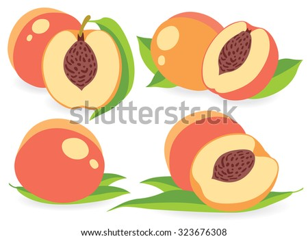 Set of peaches vector illustrations - stock vector