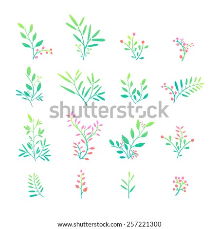 Set of plant elements. Bouquets, kits, ornaments of grass, twigs, leaves and berries. Simple style. Hand drawn. Vector. - stock vector