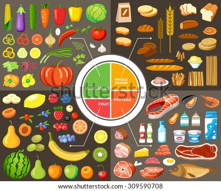 Set of products for healthy food. Plate model. Nutrients. Vector illustration - stock vector