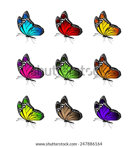 Set of Realistic Colorful Butterflies Isolated for Spring. Editable Vector Illustration - stock vector