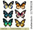 Set of realistic vector butterflies - stock photo