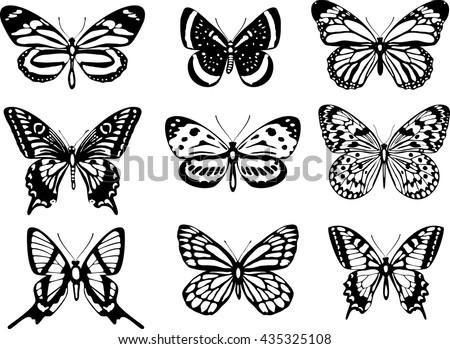 Set of realistic vector butterflies - stock vector