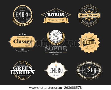 Set of Retro Vintage Badges and Logotypes. Vector design elements, business signs, logos, identity - stock vector