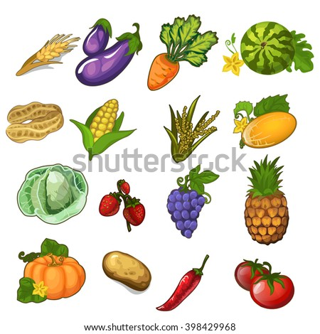 Set of ripe fruits and vegetables. Healthy eating. Vector illustration. - stock vector