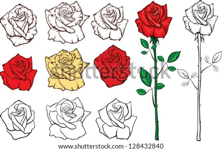 set of roses outline and colored silhouettes - stock vector