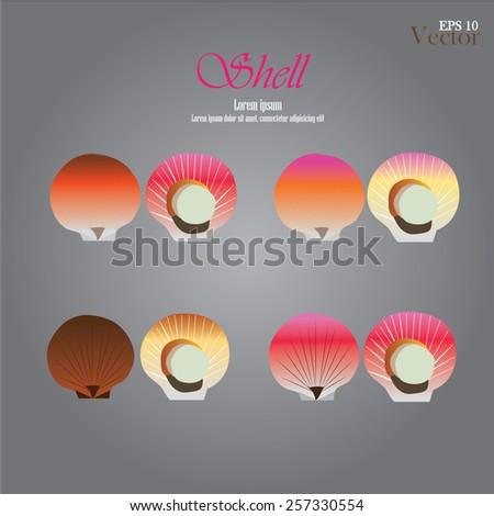 set of sea shell.vector illustration     - stock vector
