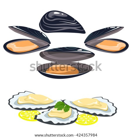 Set of seafood. The shells of oysters and mussels, lemon and lime slices. parsley leaves on the sink. Healthy eating. - stock vector
