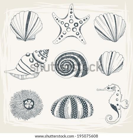 Set of Seashells - stock vector
