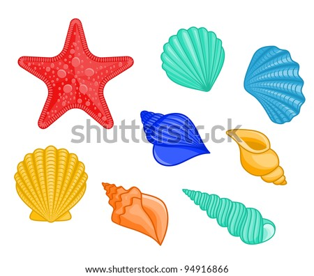Set of seashells and star for underwater design, such a logo. Jpeg version also available in gallery - stock vector