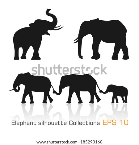 Set of silhouette elephants in different poses - Vector illustration
