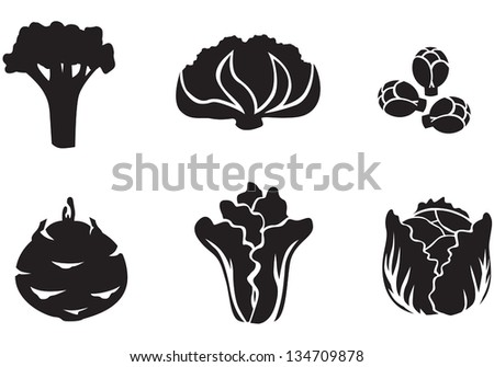 Set of silhouette images of different varieties of cabbage - stock vector