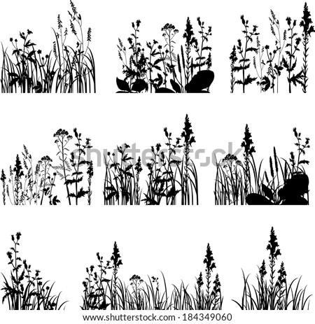 Set of silhouettes  of flowers and grass, vector illustration - stock vector