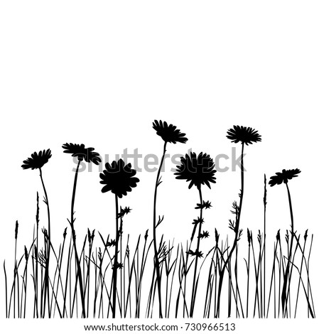 Set Of Silhouettes Flowers Daisies Carnations Dandelions Field Grass Vector