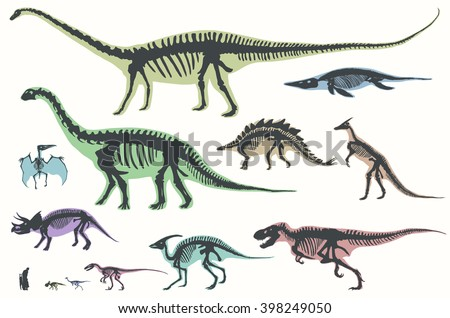 Set of silhouettes of skeletons of dinosaurs and fossils. Hand drawn vector illustration. Silhouettes of man and children, comparison of sizes, realistic size. - stock vector