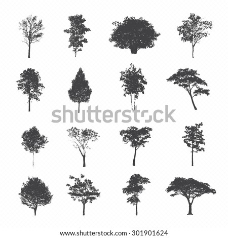 Set of silhouettes of trees - stock vector