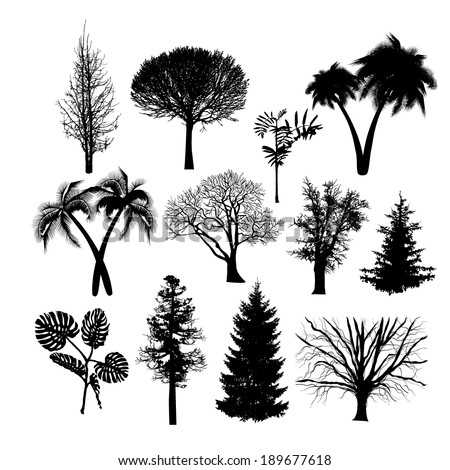 set of silhouettes of trees isolated on white background. Vector