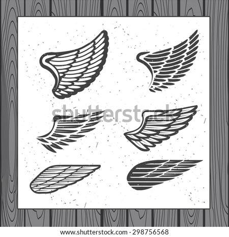 Set of Six Wings. Decoration Elements for Label, Logos, Emblems and Icons. Vector Isolated Tattoo Feathers. - stock vector - stock vector