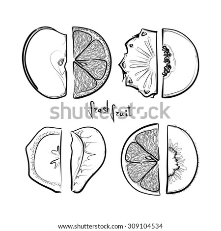 set of sketched fruit slices on white background, design elements - stock vector