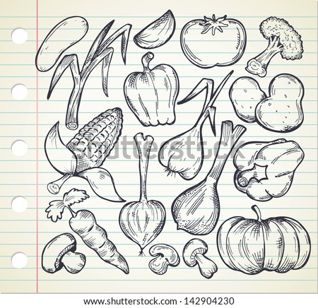 set of sketchy vegetables - stock vector