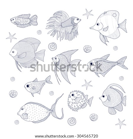 Set of 10 species of fish. Dwarf gourami, Scalar, Discus, Fish Cockerel, Pempheris vanicolensis, Chelman rostratas, and other. Sketch of aquarium and oceanic fishes  - stock vector