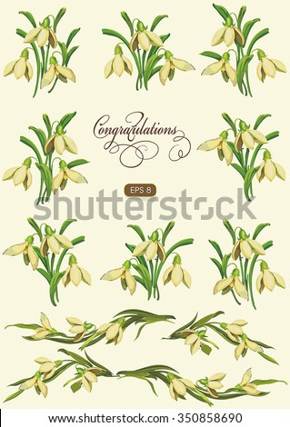 Set of Spring flowers for decoration. Snowdrop, graphics vector illustration - stock vector