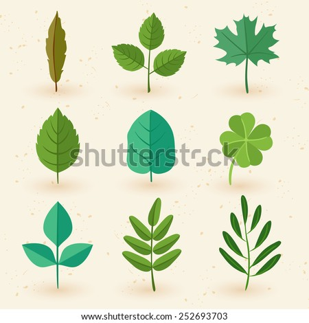 Set of spring leaves : Vector Illustration