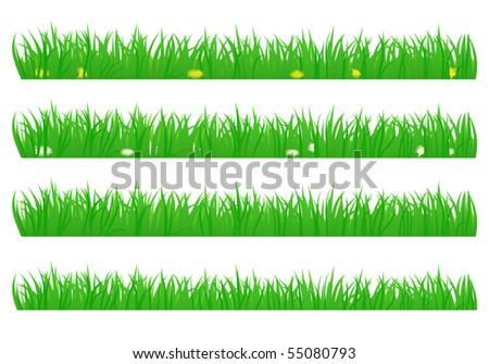 Set of summer grass - stock vector