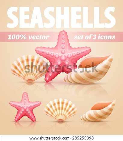 Set of summer sea shells and starfish icons. Eps10 vector illustration - stock vector