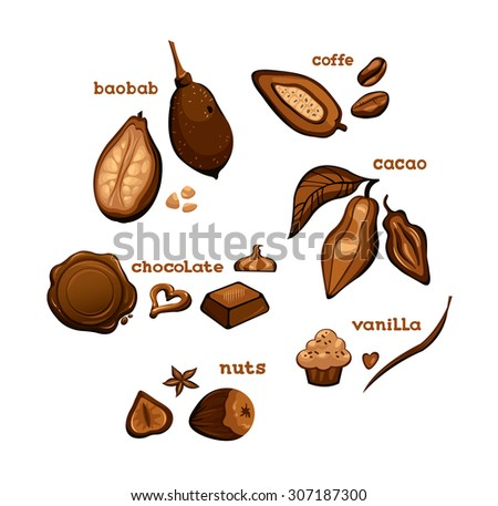 Set of sweet cooking ingredients - chocolate, cocoa, vanilla, coffee and nuts. Vector isolated object. - stock vector