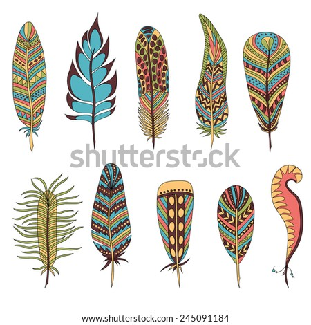 Set of ten colorful feathers. Vector illustration - stock vector