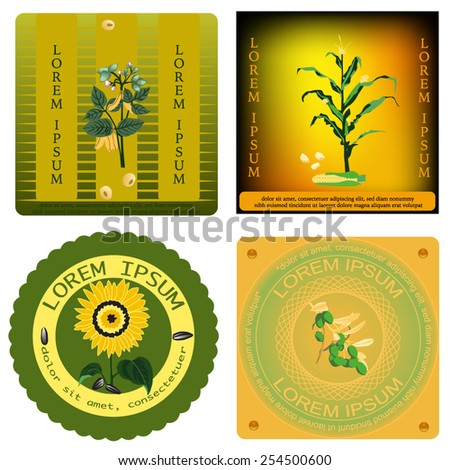 Set of the eco labels. Bio template with types of the plants. Vector