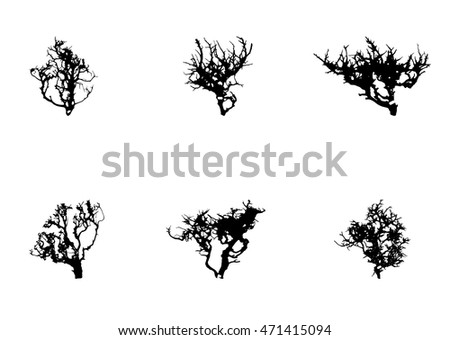 Set of Tree Silhouette Isolated on White Backgorund. Vector Illustration. EPS10