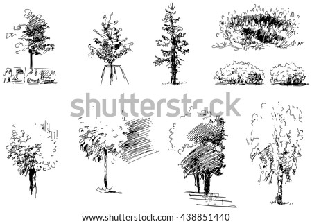 Set of trees and bushes drawn with a black ink - vector