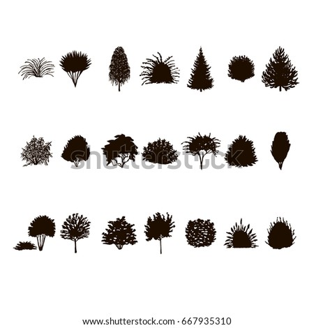 set of Trees and bushes silhouette isolated on white background. dendrology collection, graphic template.