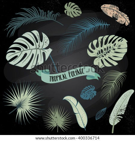 Set of trendy Black and White Tropical leaves, Vector illustration - stock vector