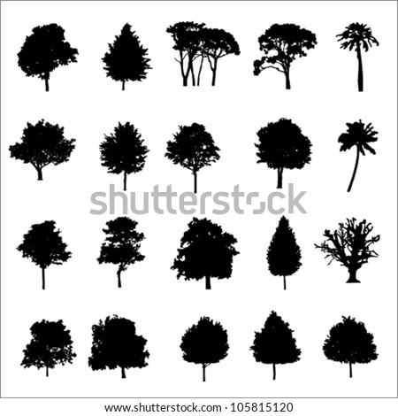 Set Of Twenty Black Vector Silhouettes Trees - stock vector