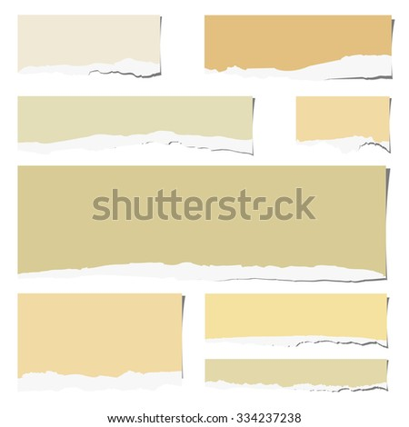 Set of various colorful torn note papers  on white background - stock vector