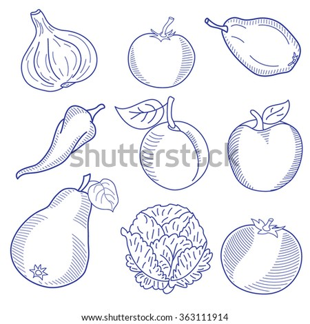 Set of various doodles, hand drawn rough simple sketches of different kinds of vegetables. Vector freehand illustration isolated on white background. - stock vector