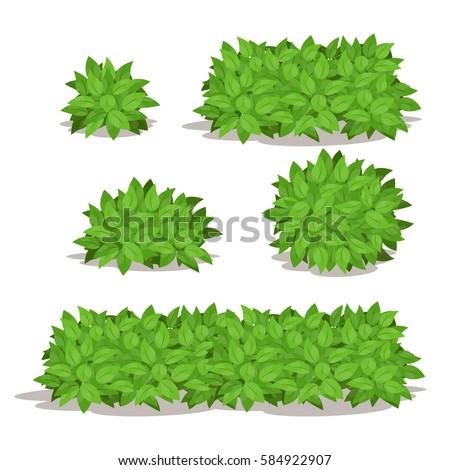 Bushes Stock Images RoyaltyFree Images Vectors Shutterstock