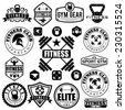 Set of various sports and fitness icons and design elements - stock vector