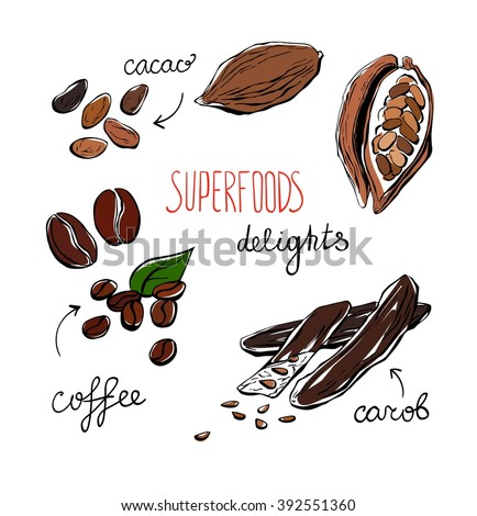 Set of vector doodle illustrations of delicious superfoods. Carob, cacao and coffee beans. Simple hand drawn doodle objects isolated on white background. Collection of sketchy dietary supplements. - stock vector