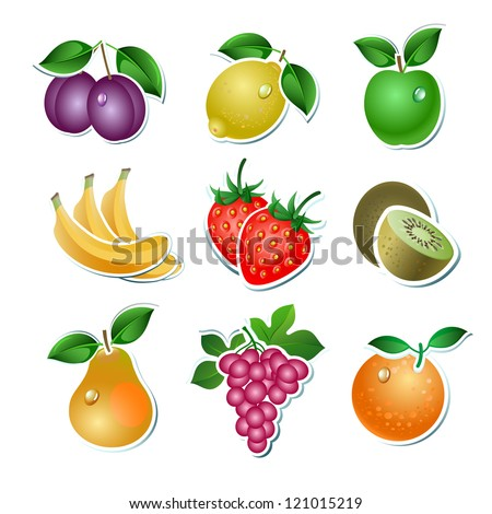 Set of vector fruit on the white background