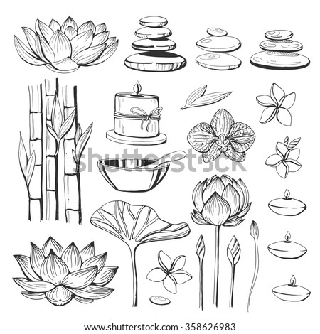 Set of vector hand drawn elements spa. Natural stones, lotus, Zen pebbles, candle, orchid, bamboo, magnolia. Sketch. SPA accessories.