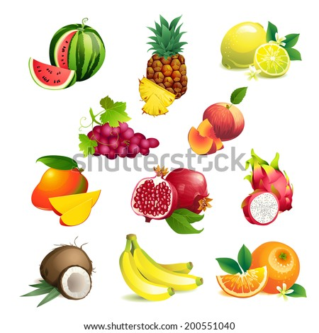 Set of Vector Illustration Icons tropical fruits with leaves and flowers - stock vector
