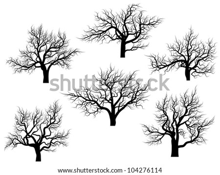 Set of vector silhouettes of oak trees without leaves during the winter or spring period.