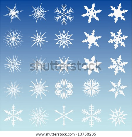 Set of 25 vector snow flakes