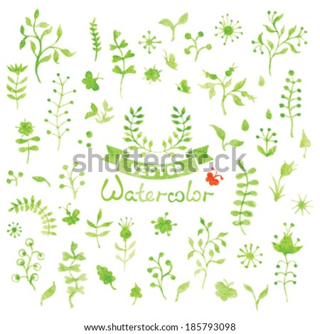Set of vector watercolor nature elements. Floral design elements isolated on white background. - stock vector