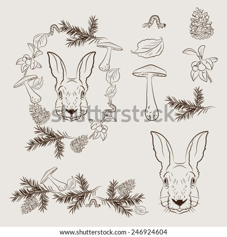 Set of vectorial forest elements. - stock vector